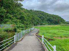 - (Hideki-I) Tags: iphone kansai japan green grass path