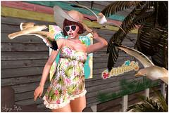 ❤ Hilda Beach (Aziza Style) Tags: lsrmoda jessposes senseevent eudorabeauty darkpassionskoffinnails avaway aseriz nomatch joplino secondlife