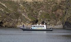 Discovery RIB (Ade-Wales) Tags: pembrokeshire pembrokeshirecoastnationalpark wales discoveryrib rib rhib rigidinflatable mhpa milfordhavenportauthority cabinrib skomer southhavenskomer skomerisland