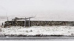 Mourne Wall (Foggy Isle Photography) Tags: mournemountains winter snow mournewall stile ladder landscape