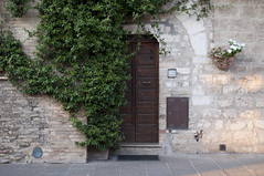Assisi, Perugia, Italy (Tokil) Tags: assisi perugia umbria italia italy medieval ancient medievalvillage ancientvillage street alley door plant colors green sunset sunsetlight urban travel nikond90