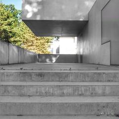 Bauhaus | Dessau | 2019 (gordongross) Tags: bauhaus bauhaus100 dessau meisterhaeuser gropius