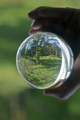 Orbing The Backyard (☼☼ Jo Zimny Photos☼☼) Tags: orb glass orbing crystalball round hand mine