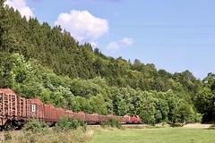 265 002-5 (hartmut28) Tags: güterzug holz eisenbahn wald fluss wiese lokomotive diesellok