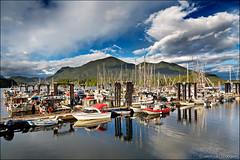 tofino (heavenuphere) Tags: tofino clayoquotsound vancouverisland britishcolumbia bc canada landscape nature harbour reflection 24105mm