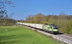 ÖBB 1016 020 München-Feldmoching (tobias.unsin) Tags: train zug güterzug germany öbb locomotive lok logistik landschaft bahn bavaria bayern spring eisenbahn 1016