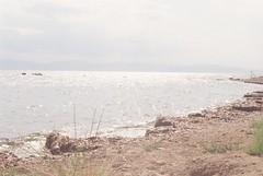CNV00014 (JamesDoddsPhotography) Tags: olympusom2n om2n jamesdodds vintage 70s athens greece poland opener
