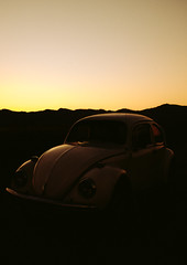 Sombra de Fusca Velho (3) (Denny.David) Tags: beetle sun yellow conceitual concept old gold low light
