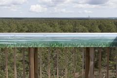 Illustration (Steffe) Tags: tornberget haninge sweden summer view observationtower utsiktstorn