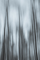 Easter 2019 (Rach_3) Tags: nature spring trees panning abstract