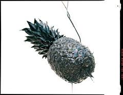 pineapple (steve-jack) Tags: kodak p aero sinar film large epson 4x5 format kit f25 ektar c41 v500 tetenal 178mm