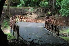 Bridge (Rckr88) Tags: bridge bridges pamplemousses mauritius trees tree green grass greenery garden gardens botanical botanicalgardens botanicalgarden botany nature outdoors travel travelling pathway path walk walkway