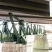 HB&T Strauss Bascule Railroad Bridge over Buffalo Bayou 1907171041
