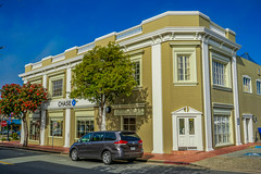 Movie Star--DSC09630--Pacific Grove, CA (Lance & Cromwell back from a Road Trip) Tags: pacificgrove montereycounty montereypeninsula central travel california roadtrip 2019 sony