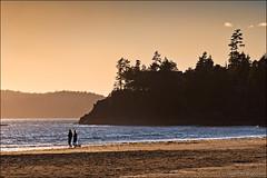 tofino (heavenuphere) Tags: vancouverisland tofino clayoquotsound sunset canada beach nature silhouette landscape bc britishcolumbia 24105mm mackenziebeach