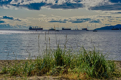 View From the Beach (Martin Smith - Having the Time of my Life) Tags: kitsilano kitsbeach beach grasses burrardinlet freighters harbor harbour martinsmith ©martinsmith landscape vancouver vancouverbc britishcolumbia