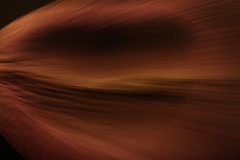 ICM blur abstract: biological content - #21 (Jon Dev) Tags: monochrome minimalism zooming