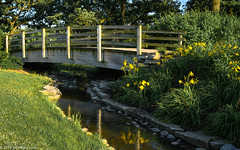 Bridge Over Cantigny Waters (Jim Frazier) Tags: 2019 20190710cantignyphotowalk 2019cantigny 2019cantignyphotowalks ariverrunsthroughit balance bank bluesky botanic botanicgardens botanicalgardens bridge bridges cantigny cantignypark class creek crossings curvedleadinglines dupage dupagecounty eveninglight flowers footbridge gardens horticulture il illinois infrastructure jimfraziercom july landscape lateafternoonlight leadinglines loaded museums nature parks photoclass photowalk preserves publicgardens q3 riparian river riverbank riverfront riverside ruleofthirds scenery scenic seminar spans stream structures summer sunny tocantigny transportation truck water wheaton wood wooden workshop yellow f10