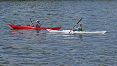 Kayak paddlers in the bay Lilla Värtan in Stockholm (Franz Airiman) Tags: stockholm sweden scandinavia