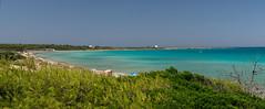Punta Pizzo from Punta della Suina (filippo rome) Tags: salento gallipoli puglia apulia italy italia summer sea mare colors colori water acqua spiaggia beach