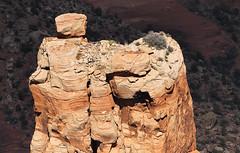 Spider Rock Detail (arbyreed) Tags: arbyreed rock rockfeature spiderrock spyderrock navajo navajonation spiderwoman canyondechelly dine redrock redrockpillars redrocktower detail spiderrockdetail topofspiderrock