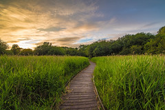 RSPB Fowlmere (Paul wrights reserved) Tags: sunset sky skyscape landscape landscapes path sunsets skyscapes leading cambridgeshire hertfordshire rspb windingpath leadinglines landscapephotography royston