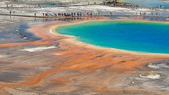 The Grand Prismatic Spring! (peddhapati) Tags: bhaskar peddhapati photography nature travel scenic holiday vacation beautiful volcanic national park wyoming yellowstone grand prismatic 2019 summer hot spring geyser nikon d90 dslr colorful
