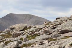 Ptarmigan (steve_whitmarsh) Tags: aberdeenshire scotland scottishhighlands highlands landscape mountain hills rock rocks topic