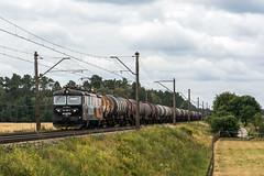 181 066-2 (Łukasz Draheim) Tags: poland polska pociąg pkp landscapes landscape locomotive logistic nikon d5200 bydgoszcz bahn train transport railway railroad rail cargo kolej