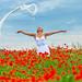 Poppies # 08