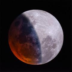 2019 lunar eclipse (Luiz Ricardo Silveira) Tags: moon eclipse fullmoon lunareclipse lunar telescope telescópio eclipselunar astrophotography astrofotografia astronomia solarsystem sistemasolar maksutov maksutovcassegrain 102mm 102mmf13 1021300 skywatcher astronomy nikond5000 nikon d5000
