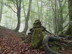 Harriekin seinalea (eitb.eus) Tags: eitbcom 23850 g152110 tiemponaturaleza tiempon2019 monte gipuzkoa oñati gurutzeazcarate