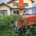 Car overgrown with plants in front of an abandoned house