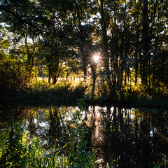 Early Morning Warmth (davepickettphotographer) Tags: greatriverouse riverouse ouse valley way ouswvalleyway landscape buckden uk eastanglia east eastern reflections water riverlandscape cambridgeshire huntingdonshire huntingdon mornings morning light sun dawn summer glow
