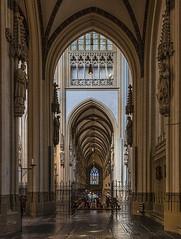 Kathedrale in s'Hertogenbosch (ulrichcziollek) Tags: niederlande shertogenbosch k kirche kirchenschiff kathedrale gotik gotisch