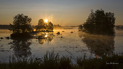 _61A6709 (fotolasse) Tags: soluppgång djur animal natur nature sweden tingsryd canon sony