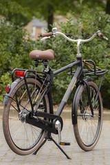 Giant Triple X (alexknip) Tags: giant giantbicycle gianttriplex triplex bicycle bike transportfiets transportbike