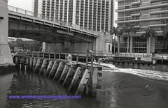 Miami_B&W_Film-4 (photomedic88) Tags: blackandwhite blackandwhitefilm kodaktmax400 bw miamiskyline rickenbackercauseway nikonn90s nikonfilmcamera daviderdman wwwerdmansphotographycom