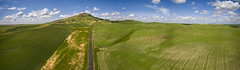 Aerial Panorama of Steptoe Butte State Park (EdBob) Tags: steptoe steptoebutte steptoebuttestatepark aerial drone dji road statepark entrance sky clouds agriculture agricultural mountain peak summer summertime tourism tourist easternwashington washington washingtonstate washingtonstatetourism photography famous colfax panorama panoramic green edmundlowephotography edmundlowe edlowe usa america roadway wheat lentil field farm farmland farming allmyphotographsare©copyrightedandallrightsreservednoneofthesephotosmaybereproducedandorusedinanyformofpublicationprintortheinternetwithoutmywrittenpermission