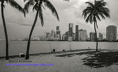 Miami_B&W_Film-14 (photomedic88) Tags: blackandwhite blackandwhitefilm kodaktmax400 bw miamiskyline rickenbackercauseway nikonn90s nikonfilmcamera daviderdman wwwerdmansphotographycom