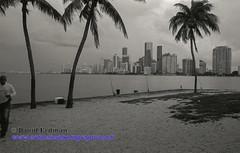 Miami_B&W_Film-13 (photomedic88) Tags: blackandwhite blackandwhitefilm kodaktmax400 bw miamiskyline rickenbackercauseway nikonn90s nikonfilmcamera daviderdman wwwerdmansphotographycom