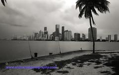 Miami_B&W_Film-12 (photomedic88) Tags: blackandwhite blackandwhitefilm kodaktmax400 bw miamiskyline rickenbackercauseway nikonn90s nikonfilmcamera daviderdman wwwerdmansphotographycom
