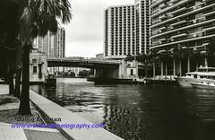 Miami_B&W_Film-10 (photomedic88) Tags: blackandwhite blackandwhitefilm kodaktmax400 bw miamiskyline rickenbackercauseway nikonn90s nikonfilmcamera daviderdman wwwerdmansphotographycom