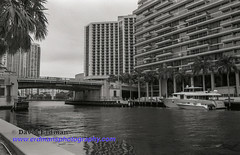 Miami_B&W_Film-3 (photomedic88) Tags: blackandwhite blackandwhitefilm kodaktmax400 bw miamiskyline rickenbackercauseway nikonn90s nikonfilmcamera daviderdman wwwerdmansphotographycom