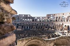 Non desistas, non exieris.  #coliseo #coliseum #anfiteatro #romano #ciudad #city #roma #italia #sombras #shadow #turismo #tourism #viajar #travel #paisaje #landscape #photography #photographer #inspired_by_colour #MiFotoDR #sonyimages #sonyalphasclub #son (Manuela Aguadero PHOTOGRAPHY) Tags: anfiteatro mifotodr coliseo sonyα6000 shadow manuelaaguaderophotography romano city sonyalpha sonyimages tourism italia sony6000 sonyalphasclub sombras photographer inspiredbycolour viajar paisaje coliseum roma turismo sonya6000 sonystas ciudad travel sonyalpha6000 landscape photography
