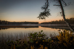 Calm lake II (mabuli90) Tags: finland lake water forest tree october autumn mist fog sunset night dusk dock pier leaves grass