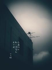 永遠(とは)別れ虹に君笑(ゑ)む光り道[山乃鯨] #haiku #photohaiku #poetry #summer #micropoetry #夏 #フォト俳句 #詩歌 #写真俳句 #俳句 #snapseed #phonto #jhaiku #3lines #poem #shortpoem #verse #actuallyautistic #mpy #vss #autismawareness #autismacceptance #autism #autismspectrum #asd (Atsushi Boulder) Tags: summer poetry poem haiku 夏 verse photohaiku 俳句 3lines 詩歌 shortpoem micropoetry snapseed phonto jhaiku 写真俳句 フォト俳句 asd autism vss autismawareness autismspectrum mpy autismacceptance actuallyautistic japan photography japanese photo literature 575 季語 五七五 autisticpoetry 失恋 恋歌