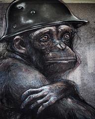 Monkey Close Up (Lens Daemmi) Tags: herakut berlin street art graffiti monkey