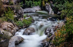 An Introvert's Dream (Calpastor) Tags: california d750 nikon ndfilter landscape vacation sequoia nationalpark flow waterfall current water river park travel