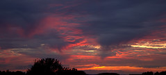 Clouds 2 (Phil*ippe) Tags: sunset clouds red purple orange trees sky